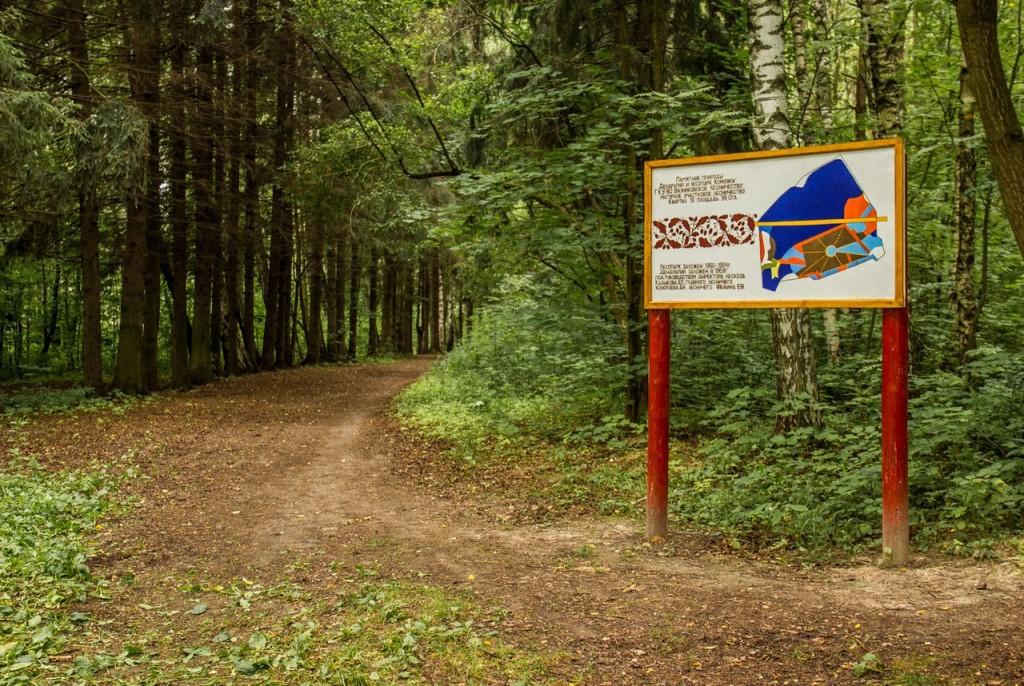 Загородный лесопарк Комзяки (Вязниковский район) 02