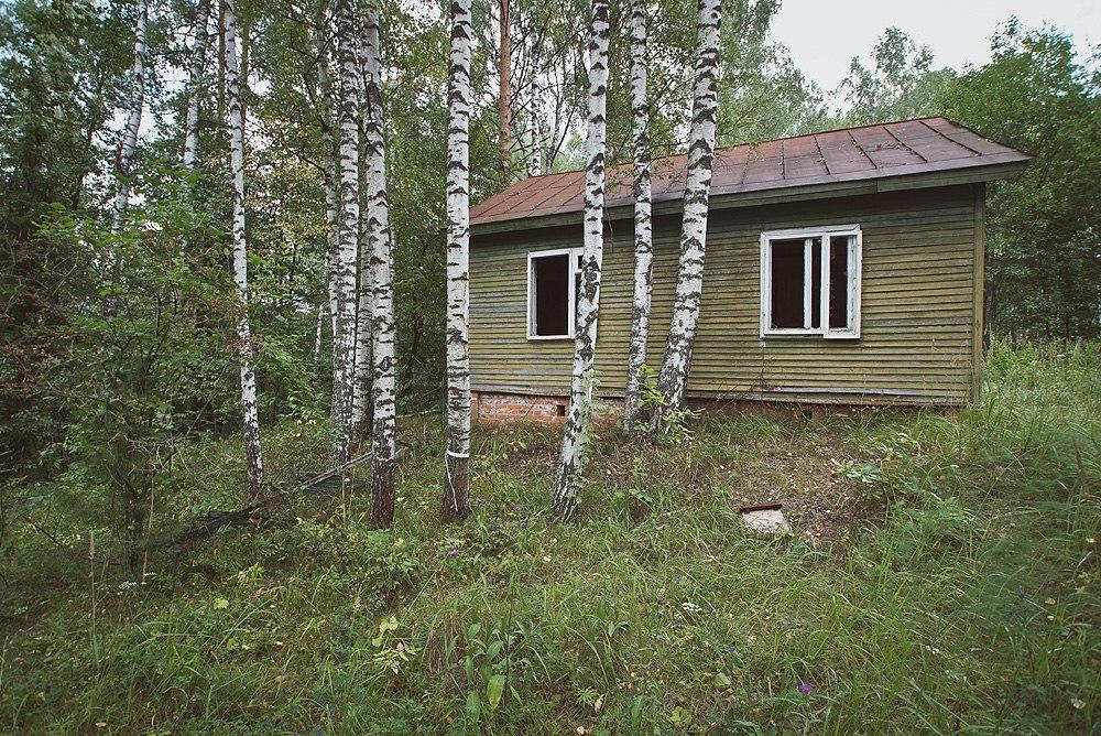 Камешковский район. Природа 06