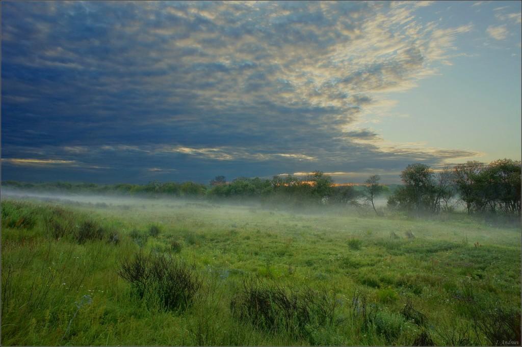 Клязьменская пойма (Суздальский район)