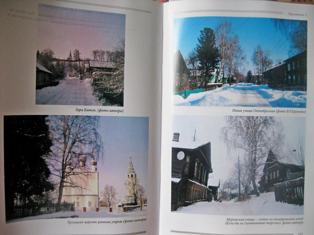 Книга Елены Дмитриевой
