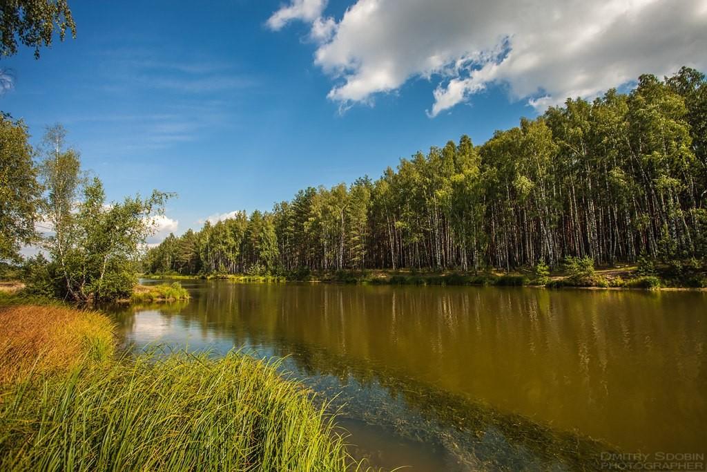 Озеро около д.Кононово Меленковского района