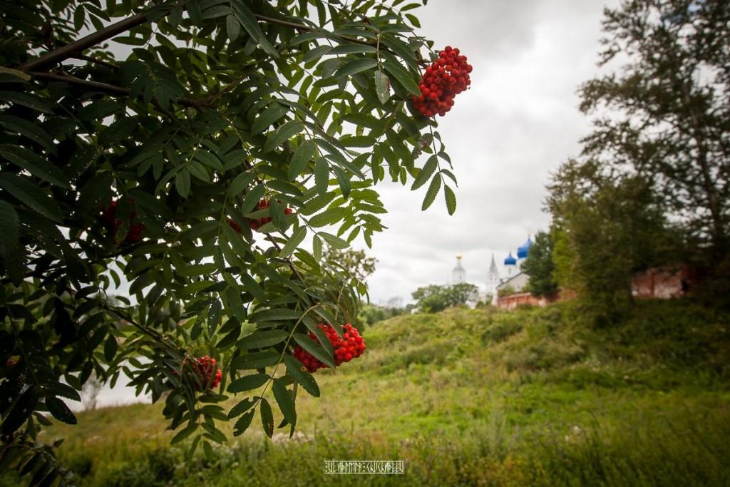 Пасмурный летний день в Боголюбово от Владимира Чучадеева 03