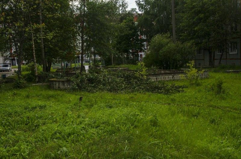 Последствия урагана во Владимирской области 04