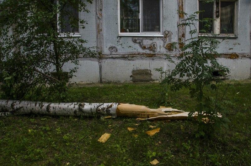 Последствия урагана во Владимирской области 09