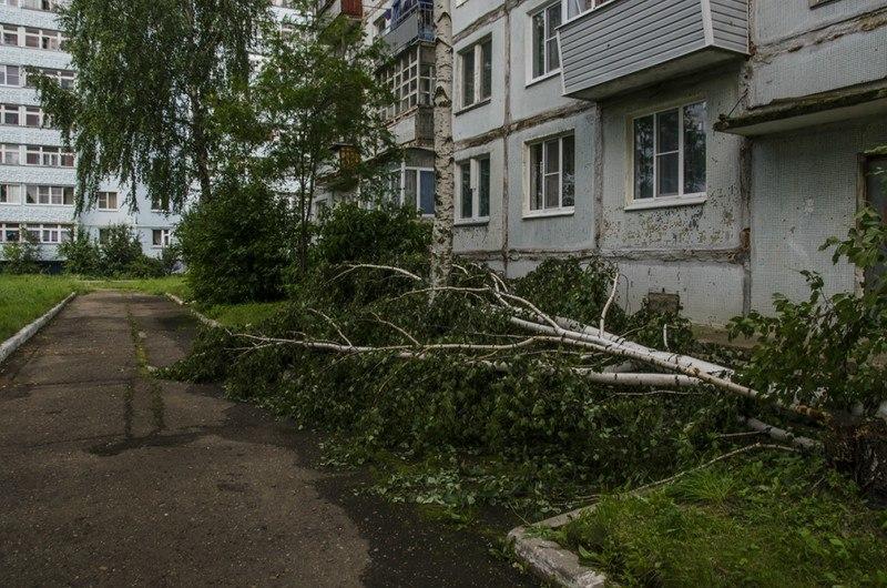 Последствия урагана во Владимирской области