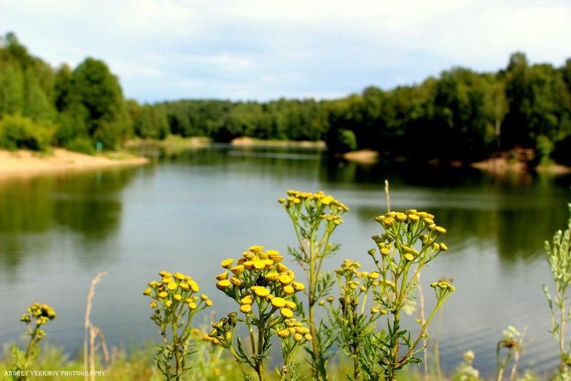 Природа Александровского района