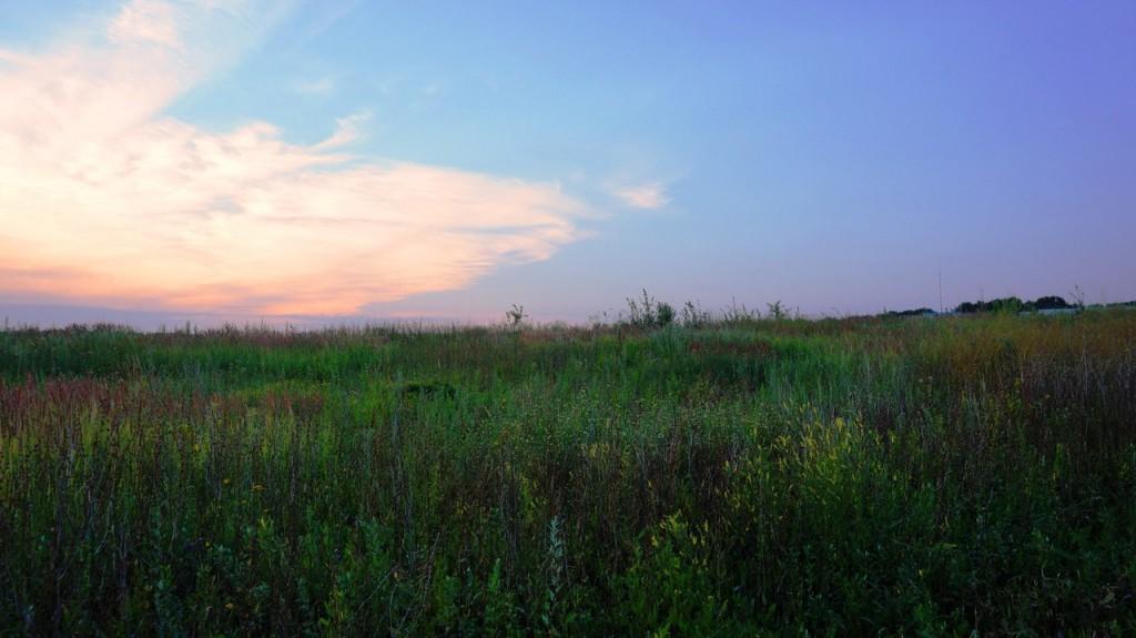 Природа Владимирской области 06