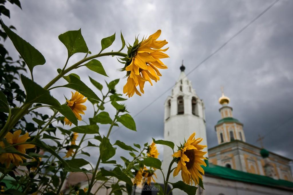 Реконструкция ул. Георгиевская во Владимире 05