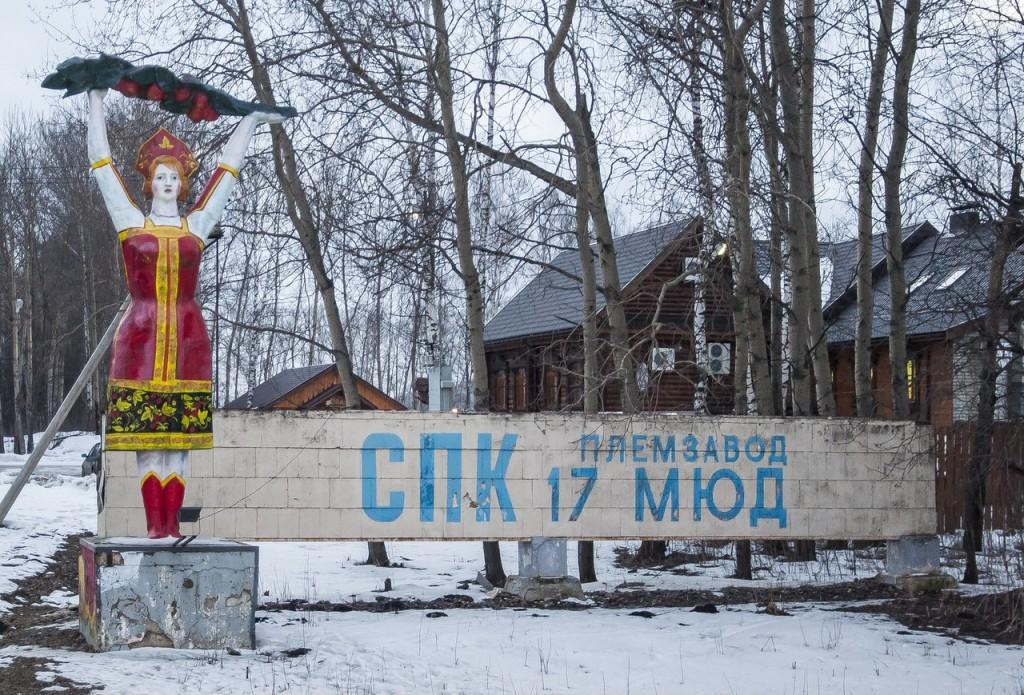 Стелла СПК Племзавод Владимирская область