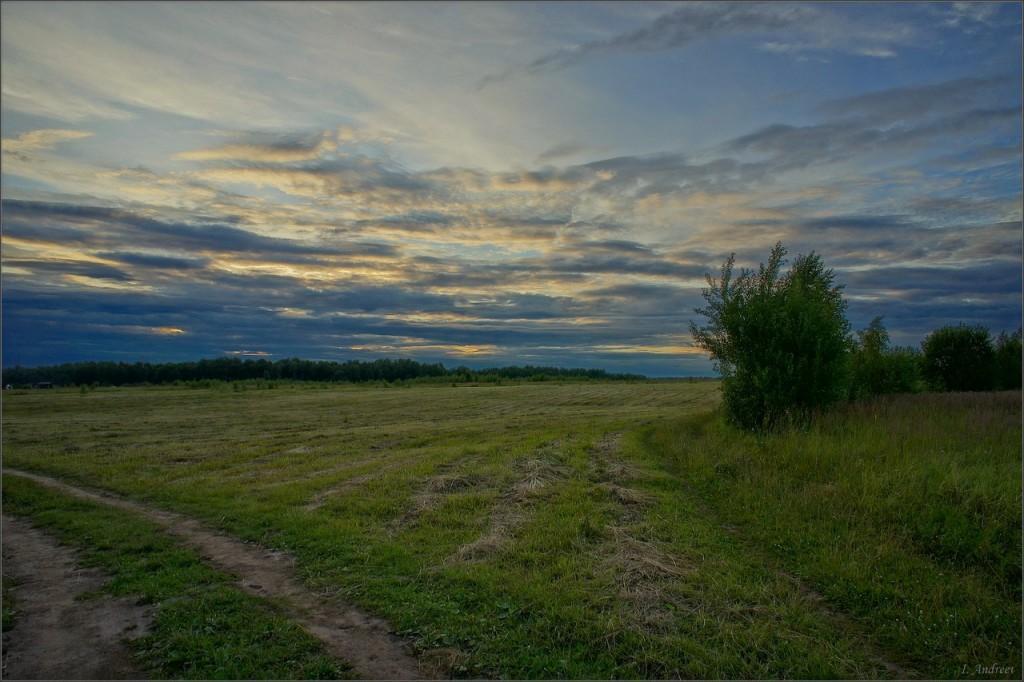 У небольшого поля на закате (Суздальский район)