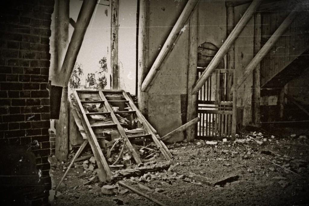 Благовещенское. Церковь Вознесения Господня (Муромский район) 06