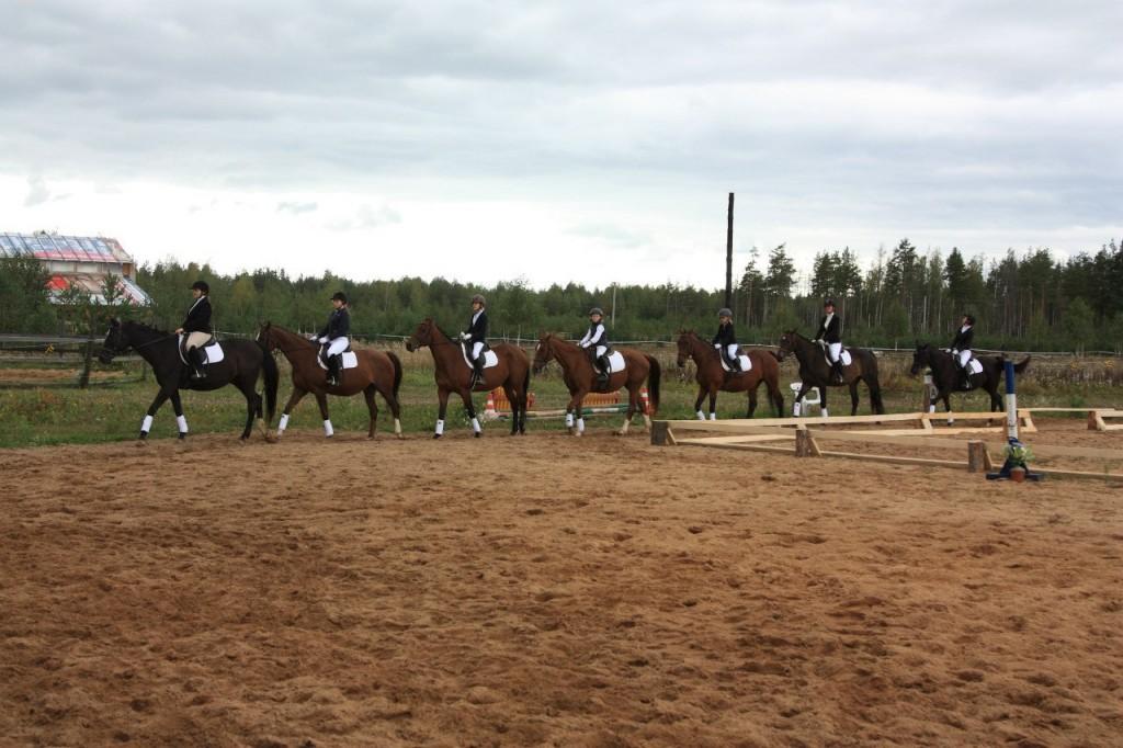В деревне Старово прошли соревнования по конному спорту 03