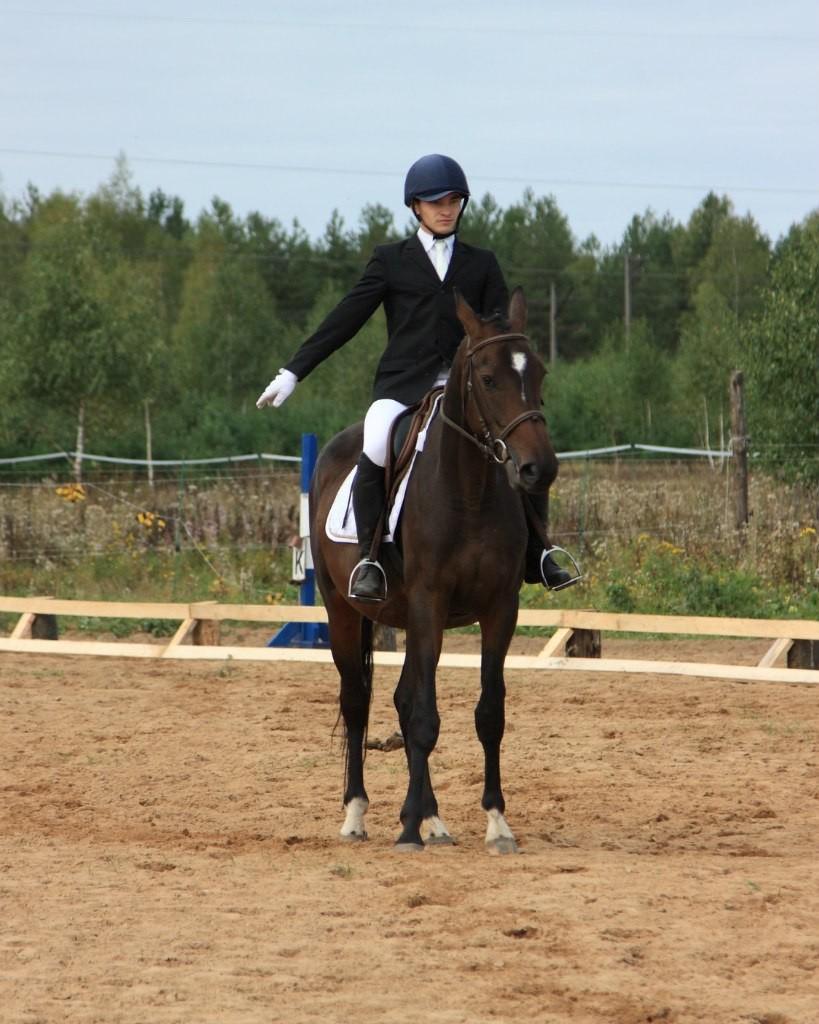 В деревне Старово прошли соревнования по конному спорту 05