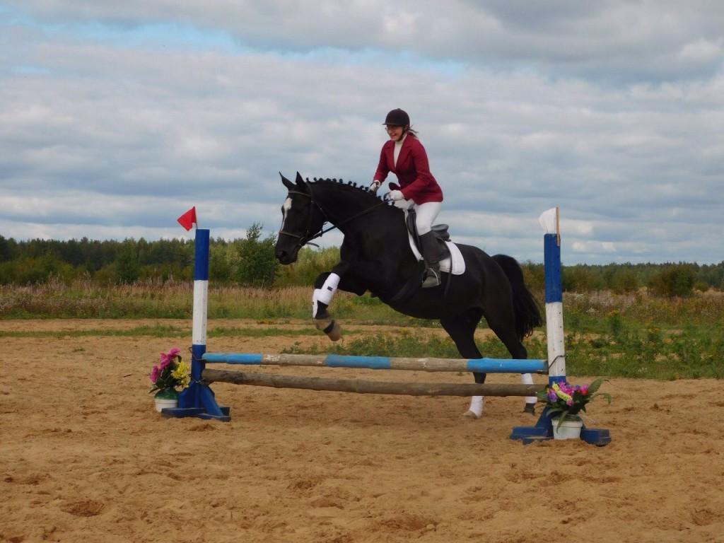 В деревне Старово прошли соревнования по конному спорту 07