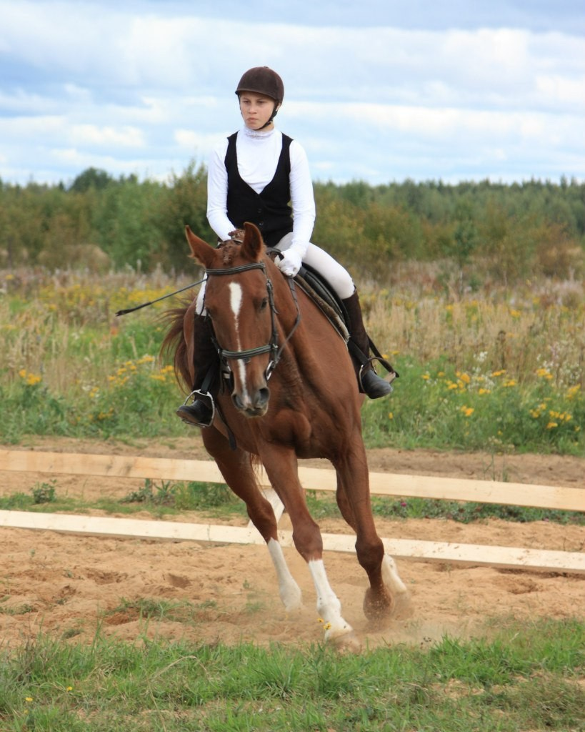 В деревне Старово прошли соревнования по конному спорту 09