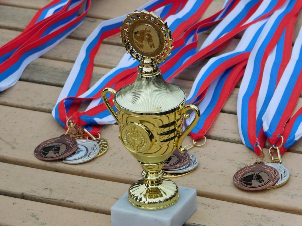 В деревне Старово прошли соревнования по конному спорту 10