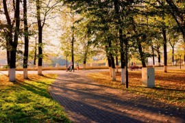В осеннем парке городском…