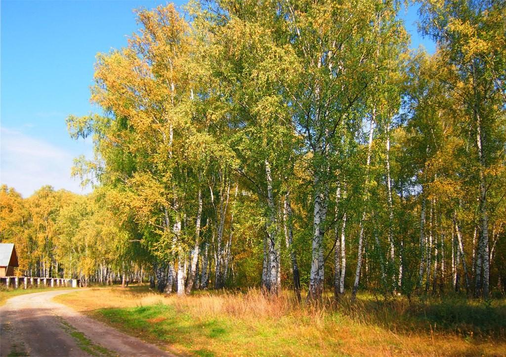 Дорога в Богородицкое подворье Троицкого монастыря города 05