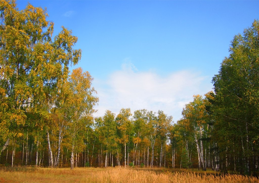 Дорога в Богородицкое подворье Троицкого монастыря города 07