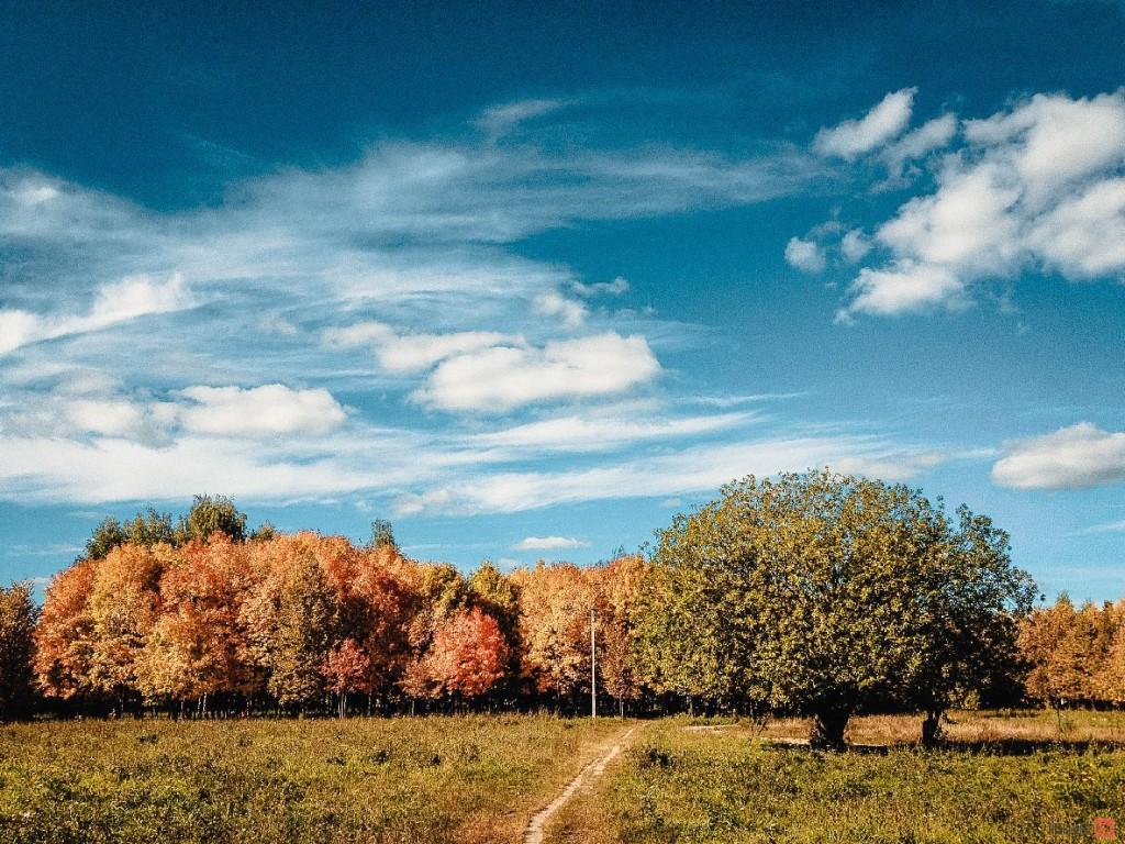 Золотая осень во Владимирской области