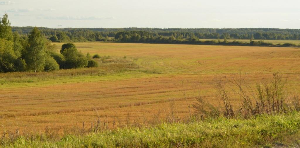 Как наступает осень во Владимирской области