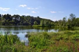Национальный парк «Мещёра» Владимирской области