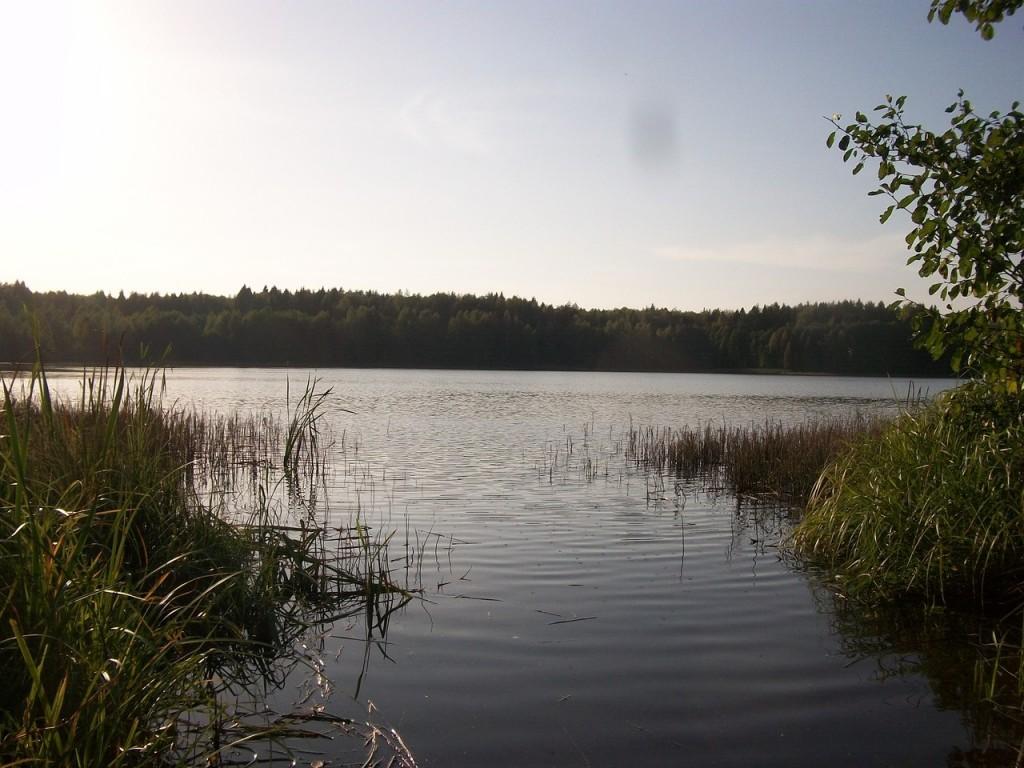 На Озере Тельвяково Киржачский район 05