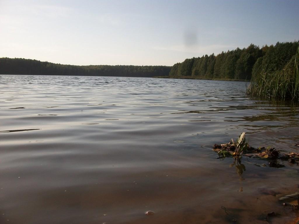 На Озере Тельвяково Киржачский район 07
