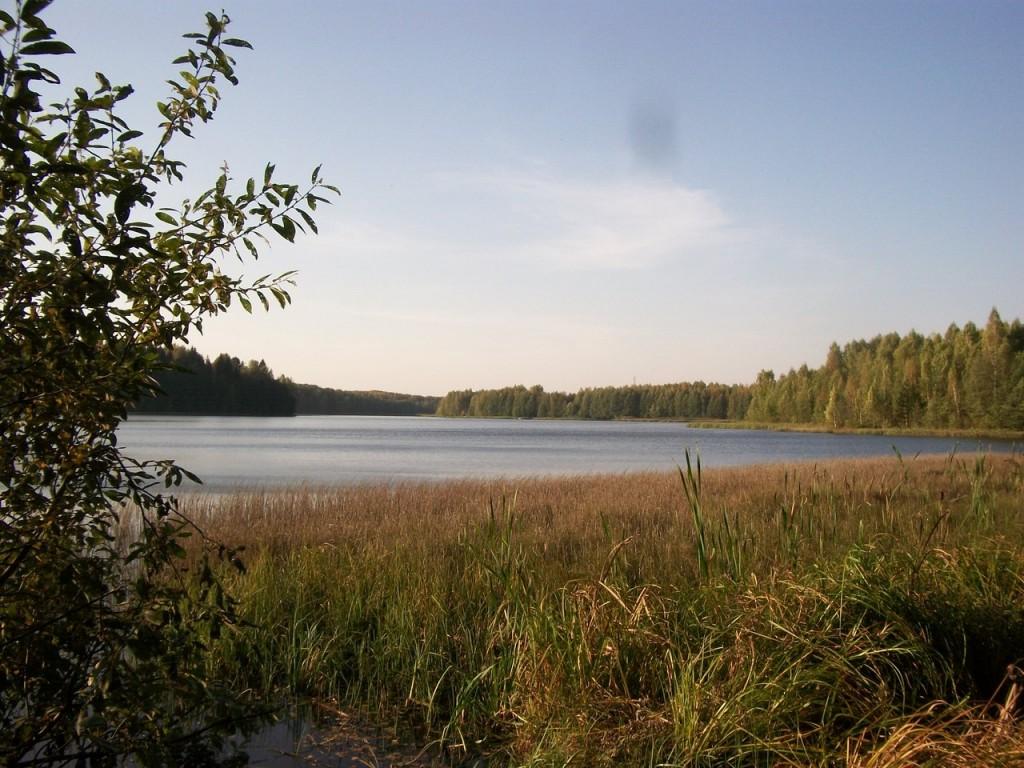 На Озере Тельвяково Киржачский район 08