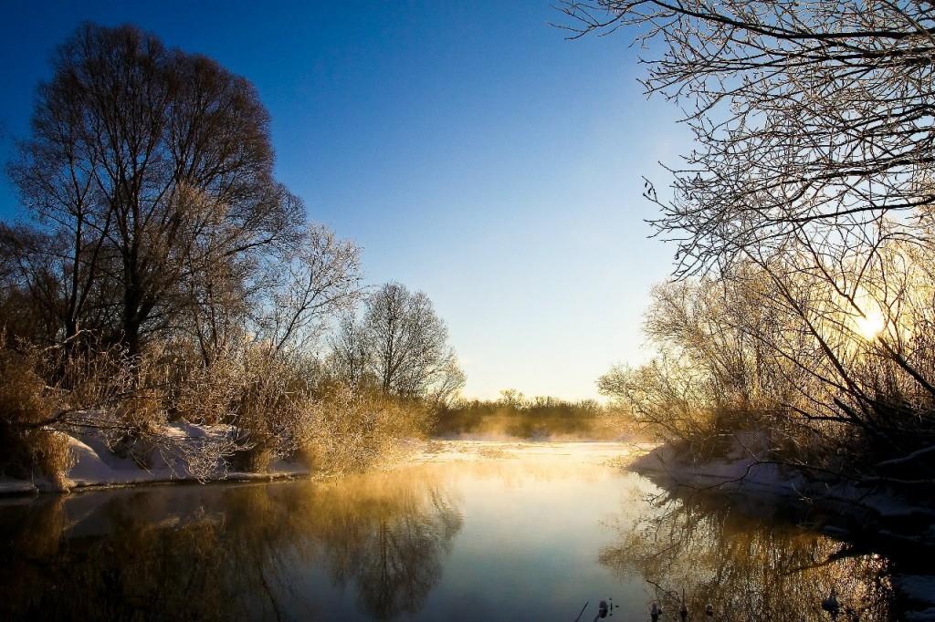 Озеро Пакино. Левая старица реки Клязьмы на западе города Коврова 05