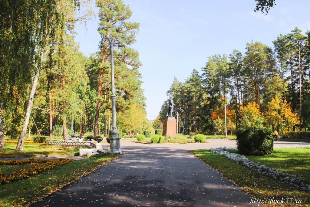 Осень на Вербовском 06