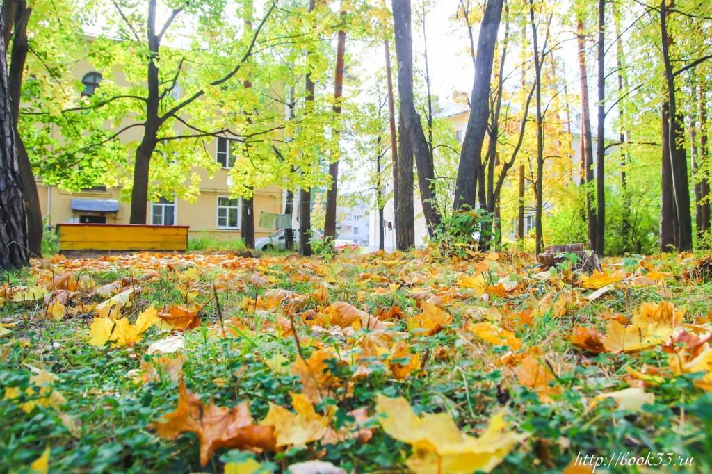 Осень на Вербовском 07