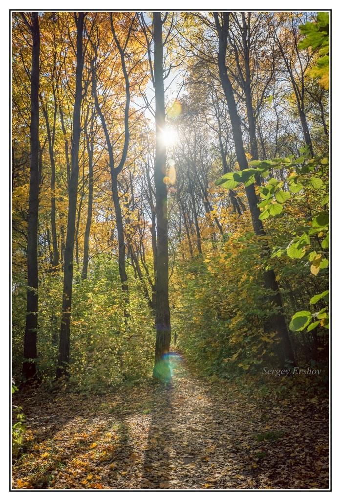 Осень - унылая пора 01