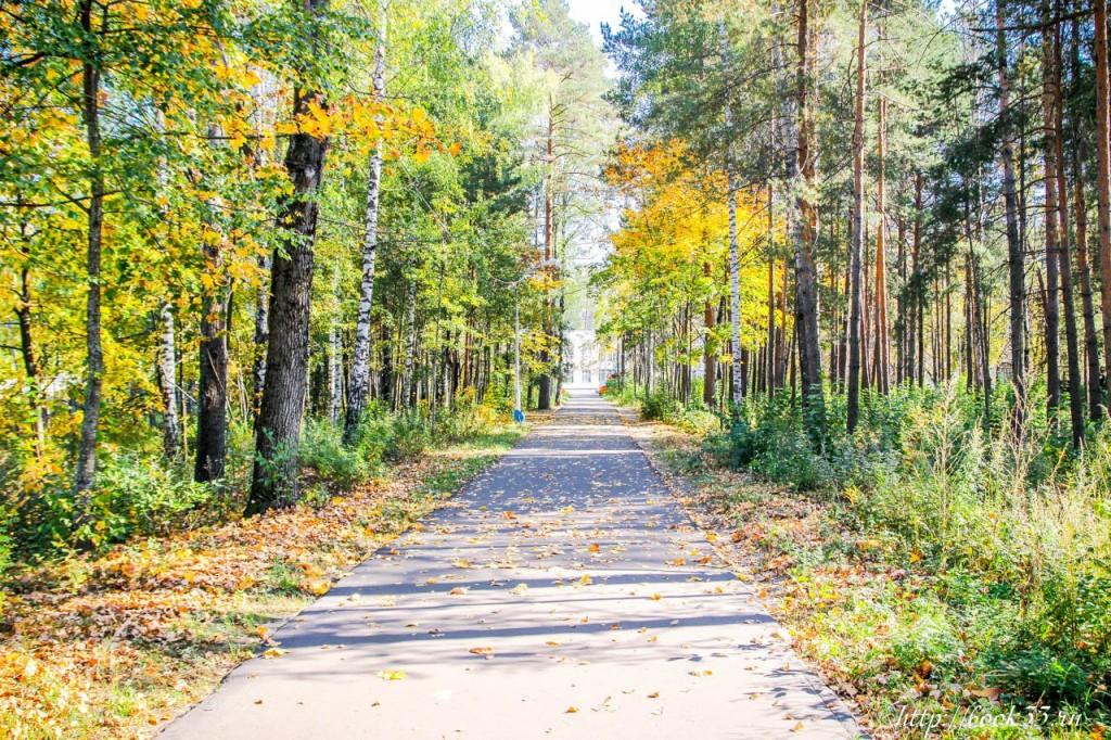 Очередная прогулка по осеннему Вербовскому 04