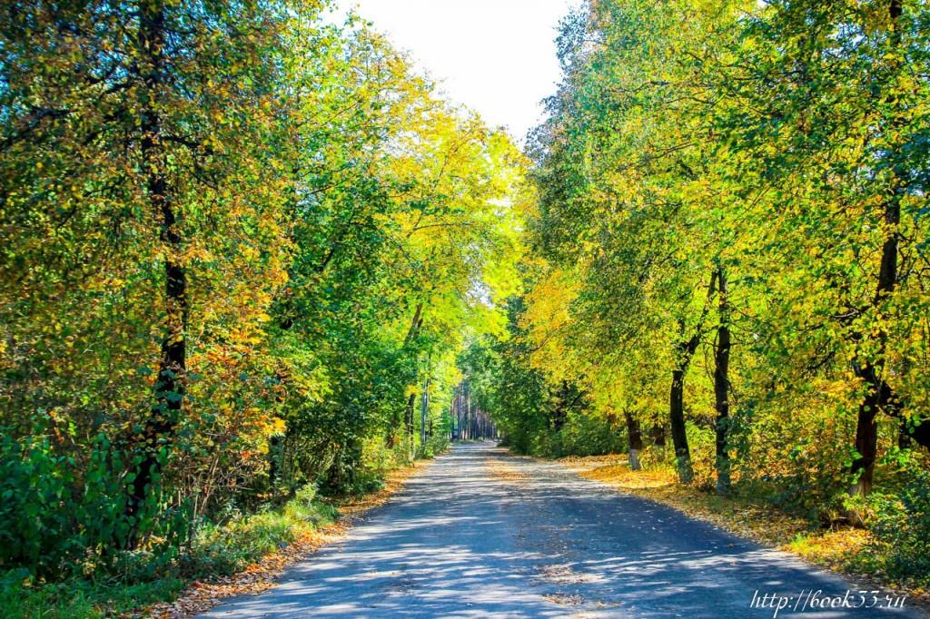 Очередная прогулка по осеннему Вербовскому 06