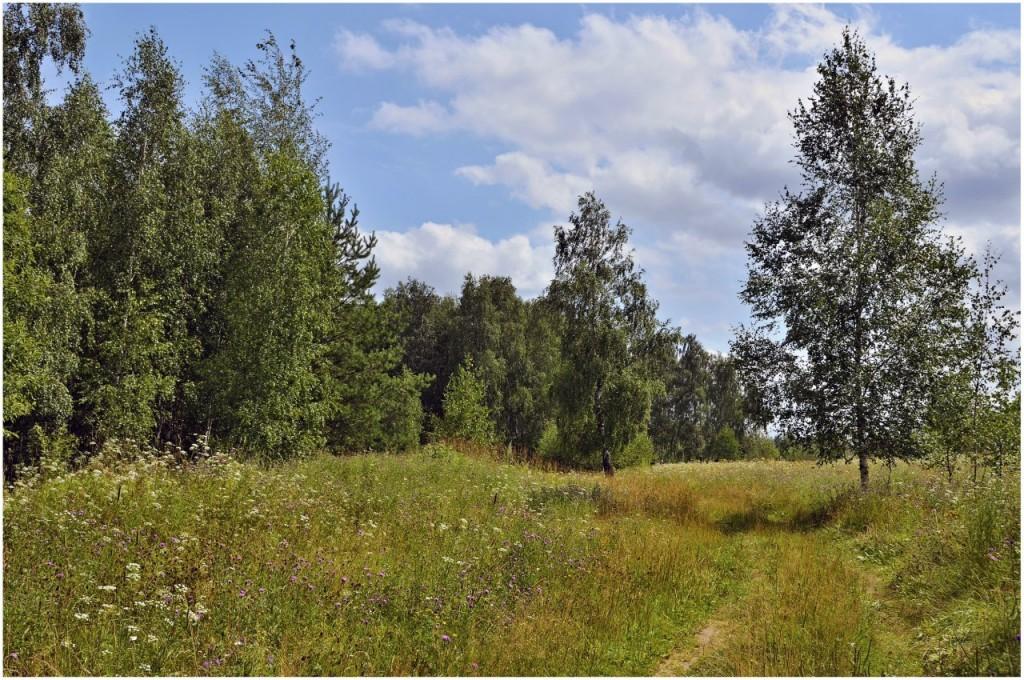 Природа Ковровского района 03