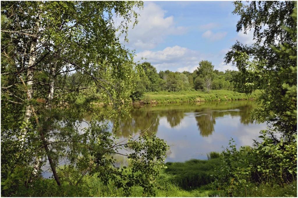 Природа Ковровского района 04