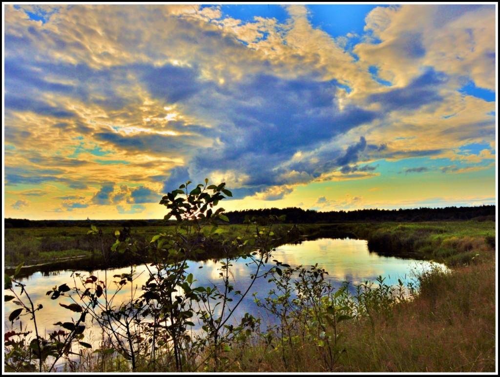 Природа Ковровского района 09