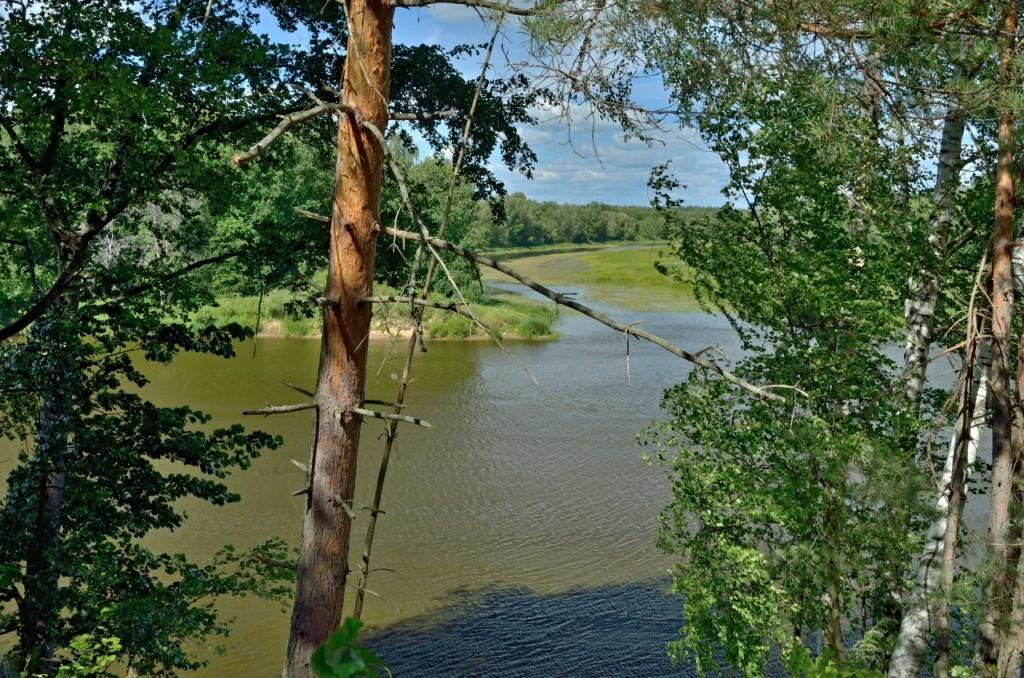 Природа Ковровского района 10