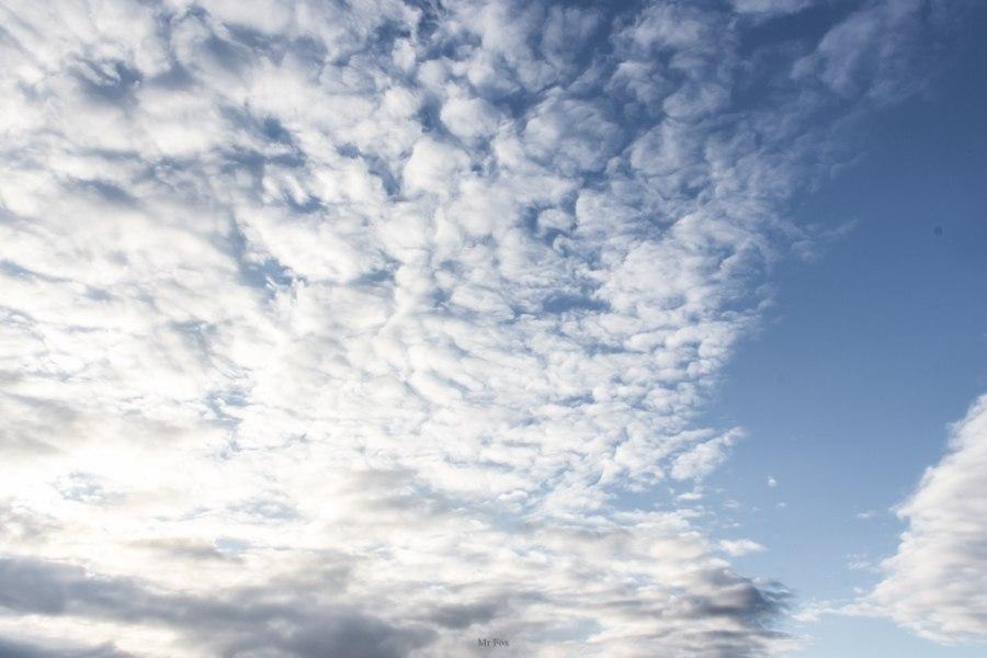 Такое разное небо ; Автор  Mr Fox 04