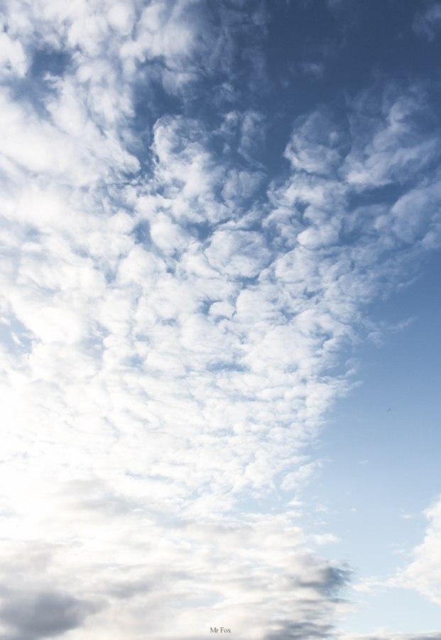 Такое разное небо ; Автор  Mr Fox 05