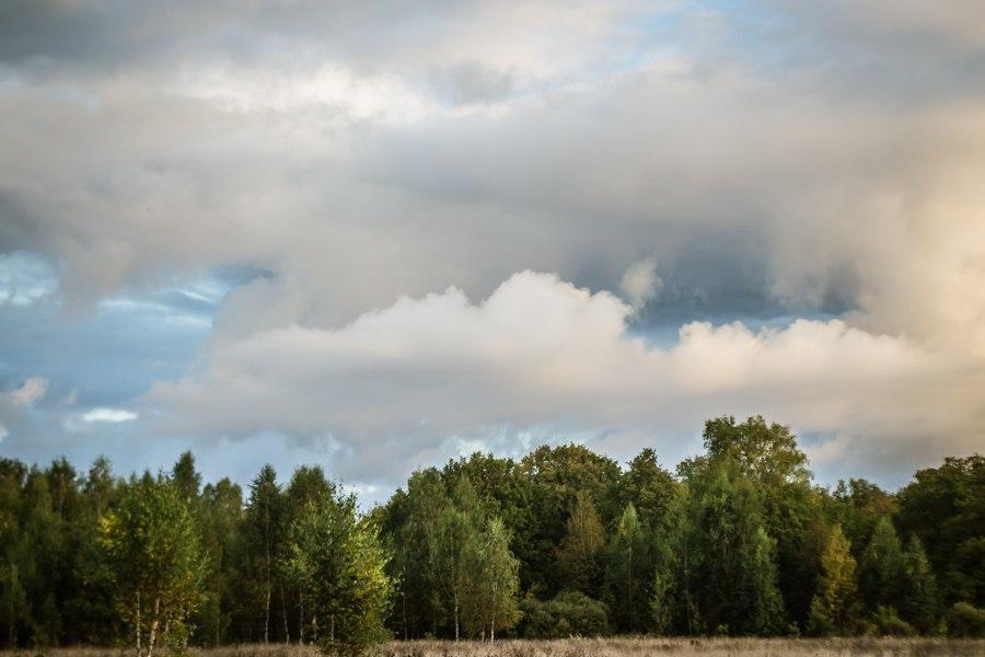 Такое разное небо ; Автор  Mr Fox 06