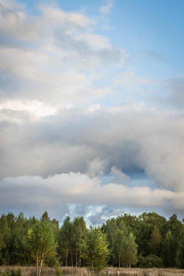Такое разное небо ; Автор  Mr Fox 07