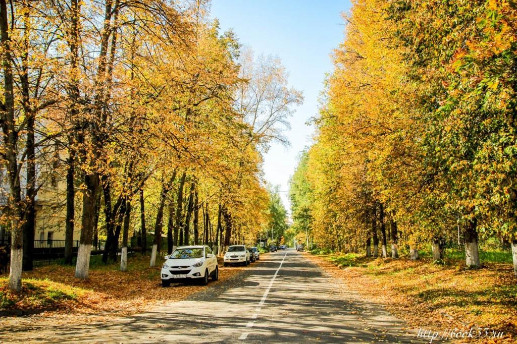 Теплая Осень на Вербовском 04