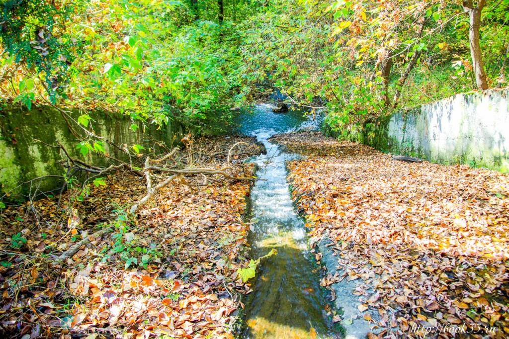 Теплая Осень на Вербовском 09