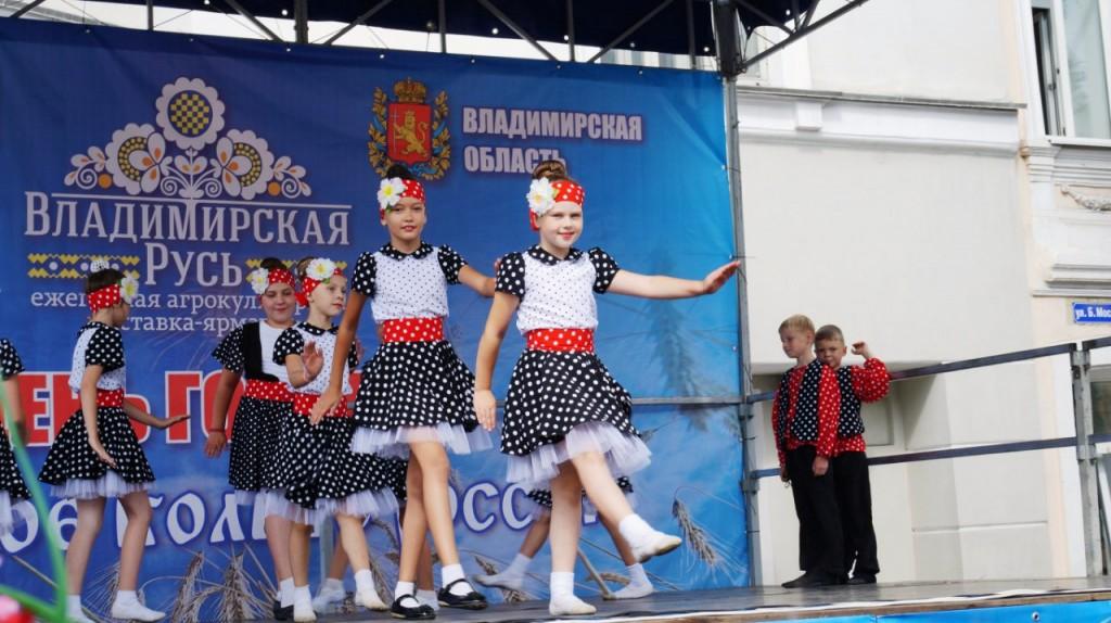 41 День Города во Владимире 2015