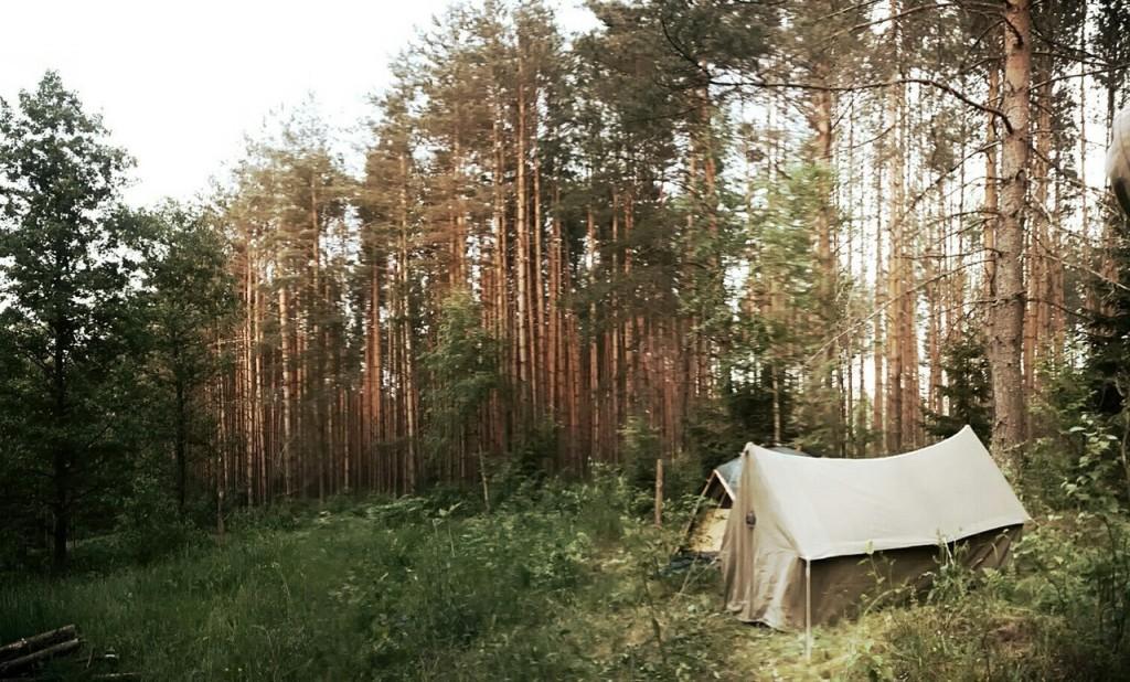 Владимирская область, оз. Верхнее 02