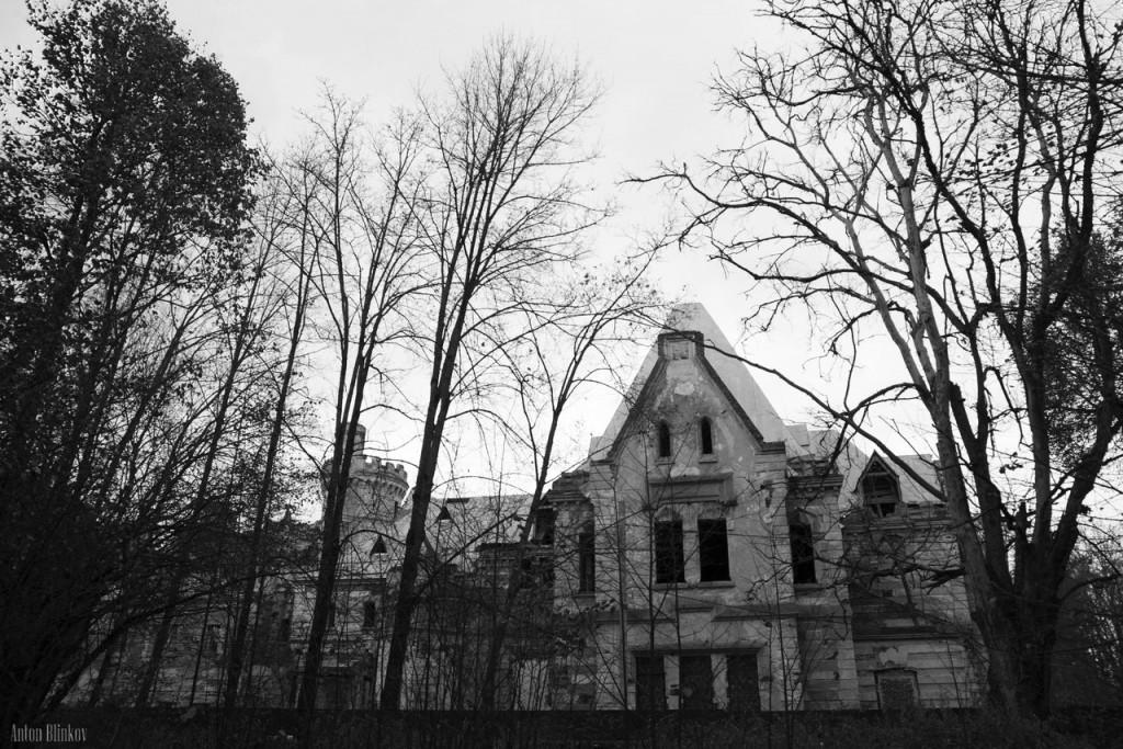 Замок Храповицкого 07