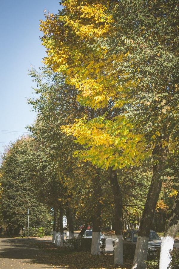 Зарисовки Осени 01