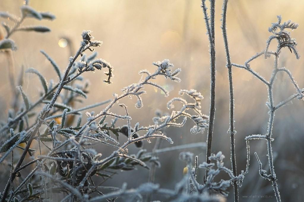 Красоты морозного владимирского утра! 08